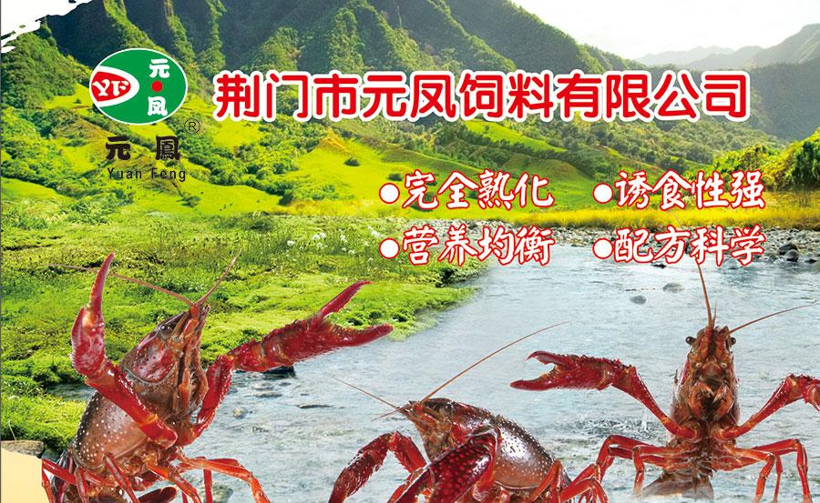 龙8国际备用网站2017年订货会现场火爆
